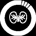 icono-cirugia-rinon